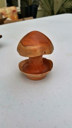 Yew mushroom