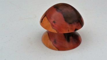 Wellingtonia mushroom box