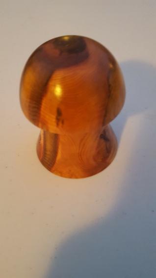 Wellingtonia Mushroom ring pot